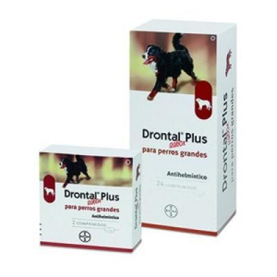 Drontal Plus Sabor Perro Gde 1 Comprimido (unidad suelta)