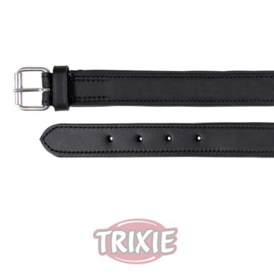 Collar Active, L, 48-55 Cm,40 Mm, Negro
