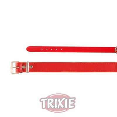 Collar Basic, Piel Xs, 19-24 Cm,12 Mm, Rojo