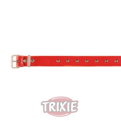 Collar Basic, Piel Xs, 21-25 Cm,12 Mm, Rojo