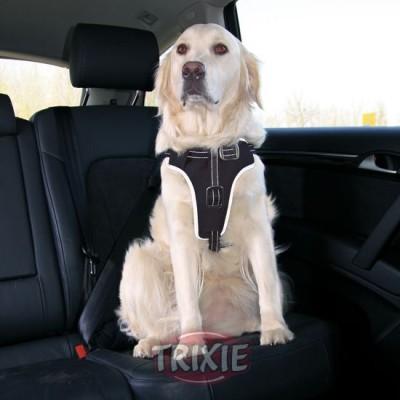 Petral Seguridad Dog Protect,M: 50-65 Cm,20 Mm,Ng