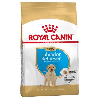 Royal Canin Breed Health Nutrition Labrador Retriever Puppy