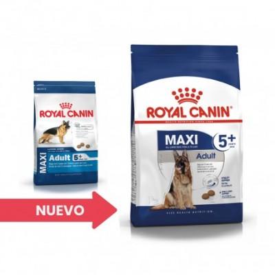 Royal Canin Size Health Nutrition Maxi Adult 5+