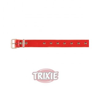 Collar Basic, Piel S, 30-35 Cm,14 Mm, Rojo