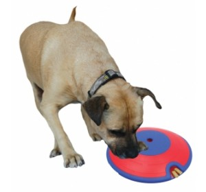 Dog Treat Maze Large
