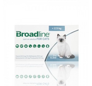 BROADLINE GATOS