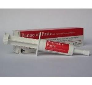 Panacur Pasta Oral 1 -Jeringa PERROS Y GATOS
