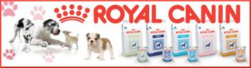 Alimentación Royal Canin