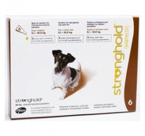 Stronghold Perros 6 pipetas